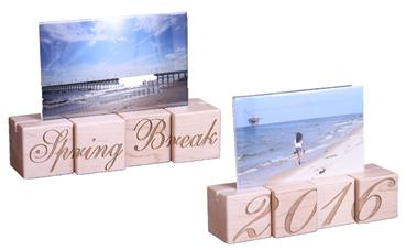 Spring Break Picture Frame